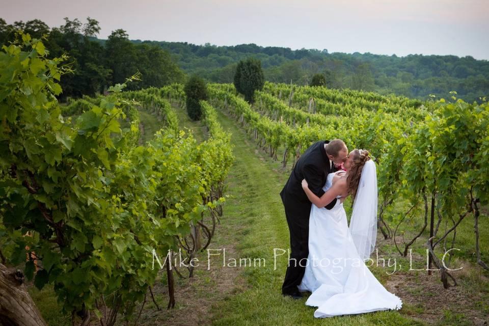 Mike Flamm Photography, LLC