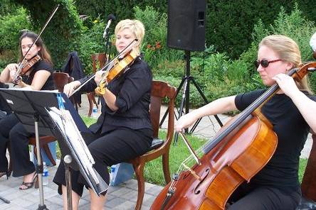 SMT Music String Quartet performs at Whitehall