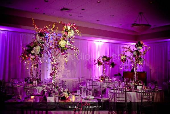 Violet reception