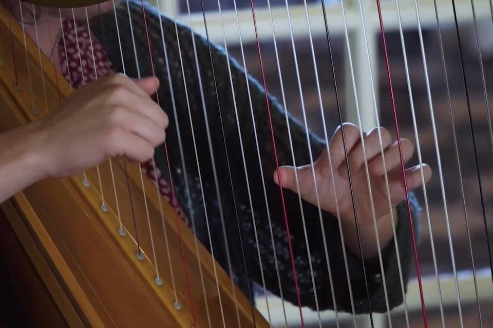 Lyrical Harp