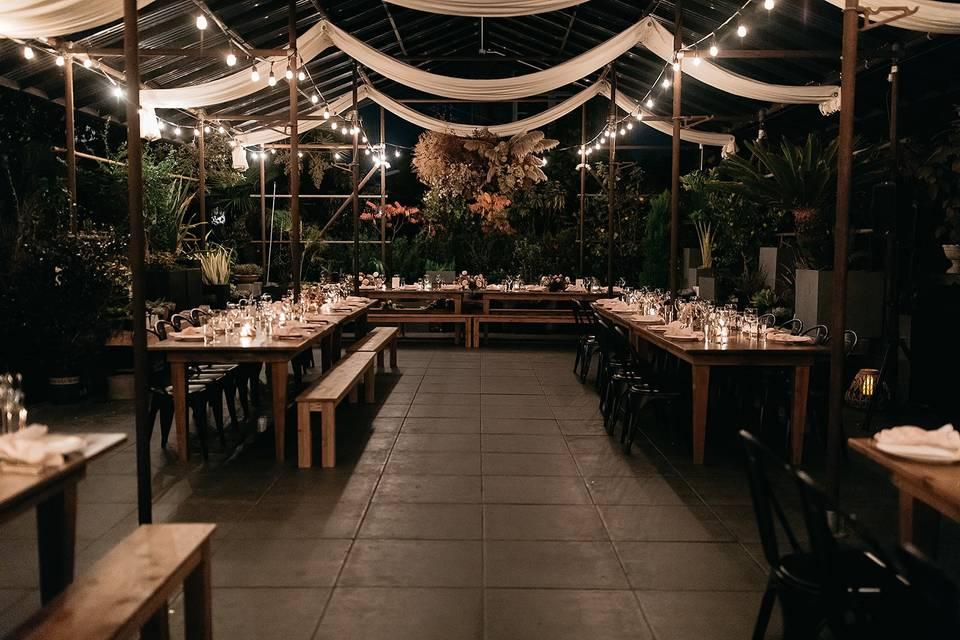 Reception under the canopy