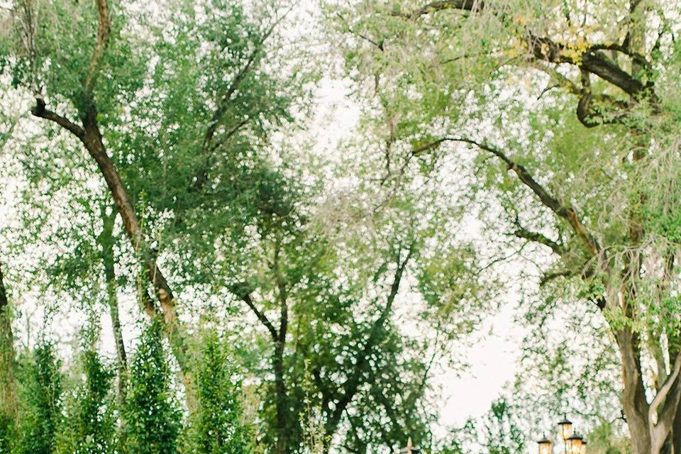 Bellissimo Gardens