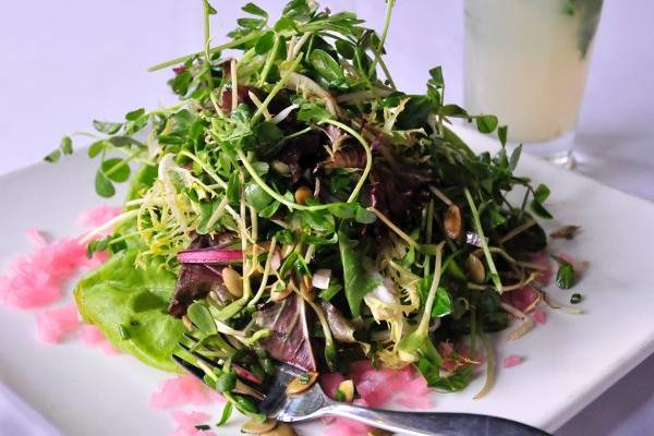 Leaf's Sprout Salad with butter lettuce, pea shoots, mixed sprouts, sunflower & pumpkin seeds, pickled red onion & radish, sherry vinaigrette