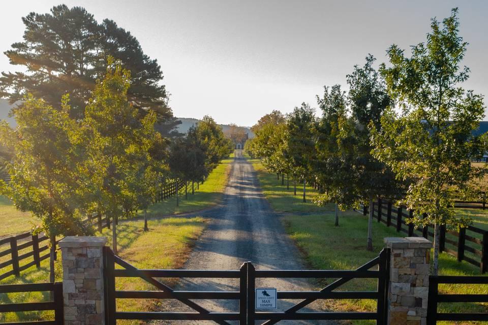 Welcoming gates