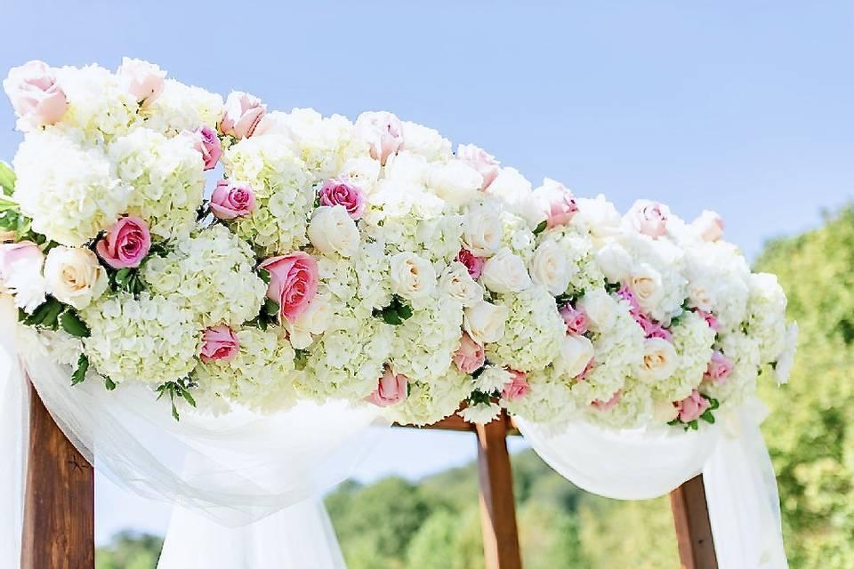 Petal Burst Flower Design Studio