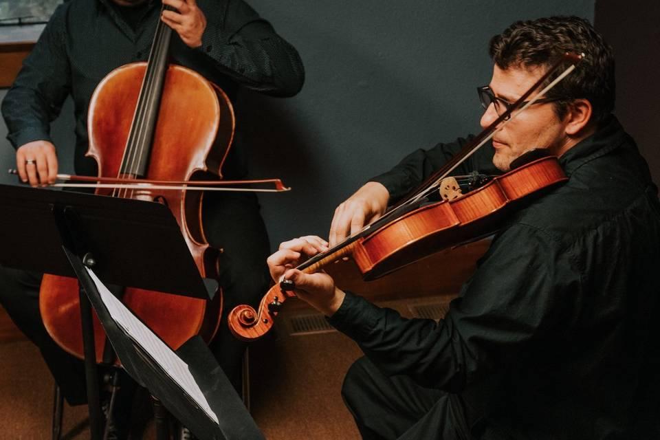 Bass and violin