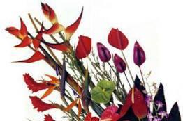 Puna Kamali'i Flowers