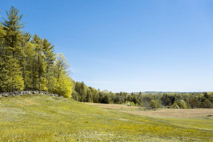 97 Acres of Maine Landscape