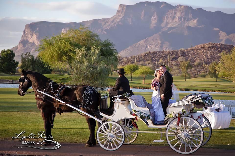 Newlyweds on a carriage