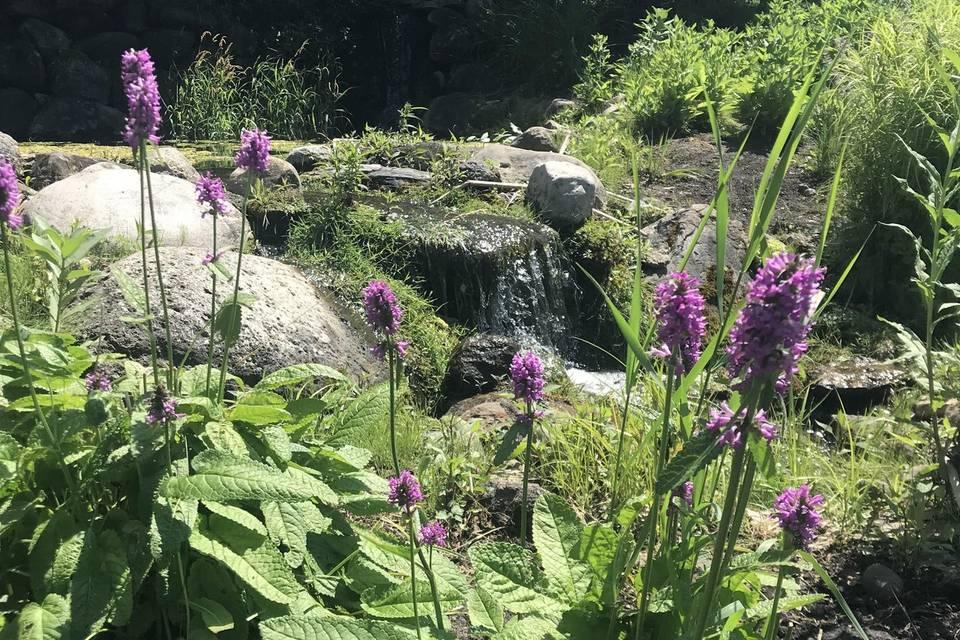 Peaceful waterfalls