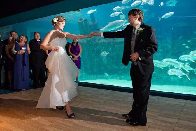 NC Aquarium Pine Knoll Shores