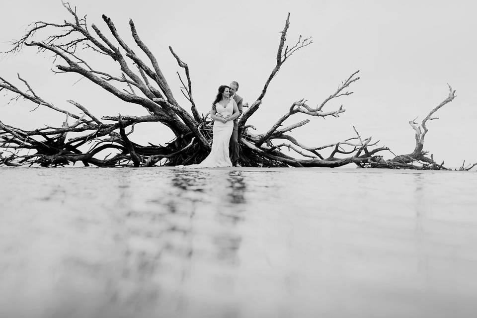 Matt Lusk Photography