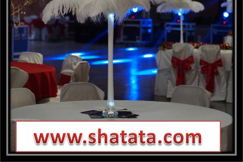 ShatataEvents - Ostrich Feather Rentals