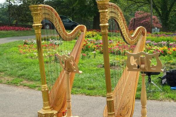 Cheryl Roeske, Harpist