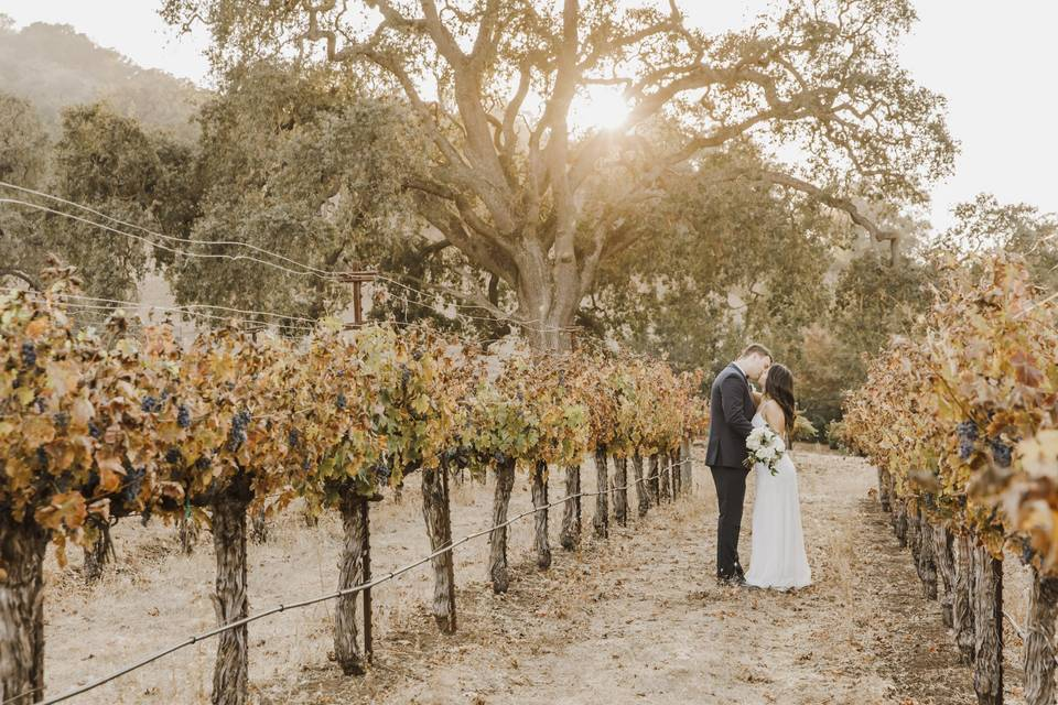 Love in the fall - Paulina Perrucci Photography