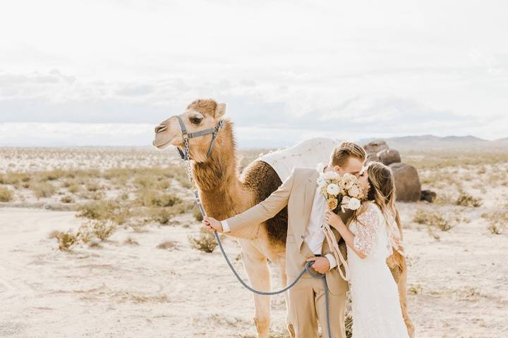 In the desert - Paulina Perrucci Photography