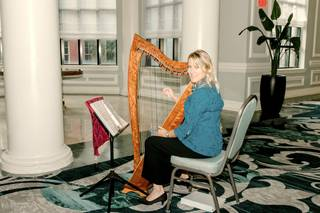 Kim Perkins Charleston Harpist