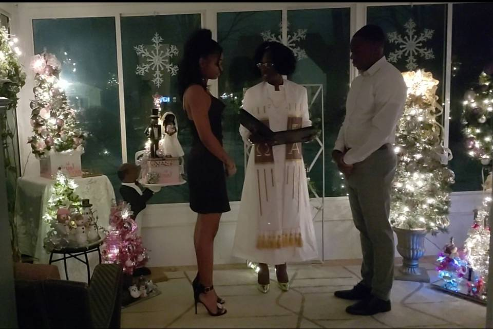 A Christmas Wedding in NY