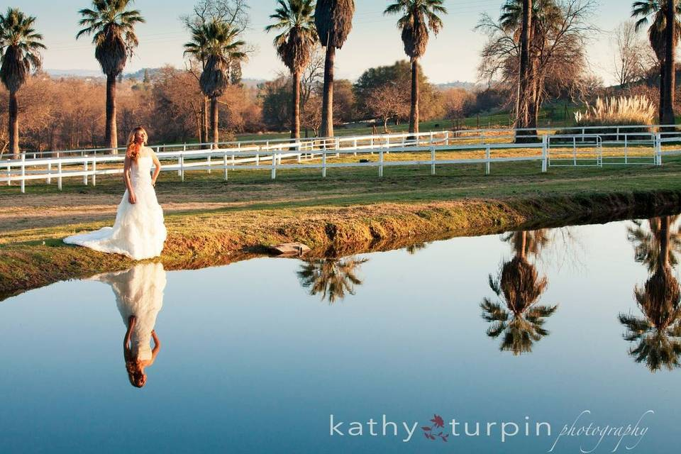 Kathy Turpin Photography
