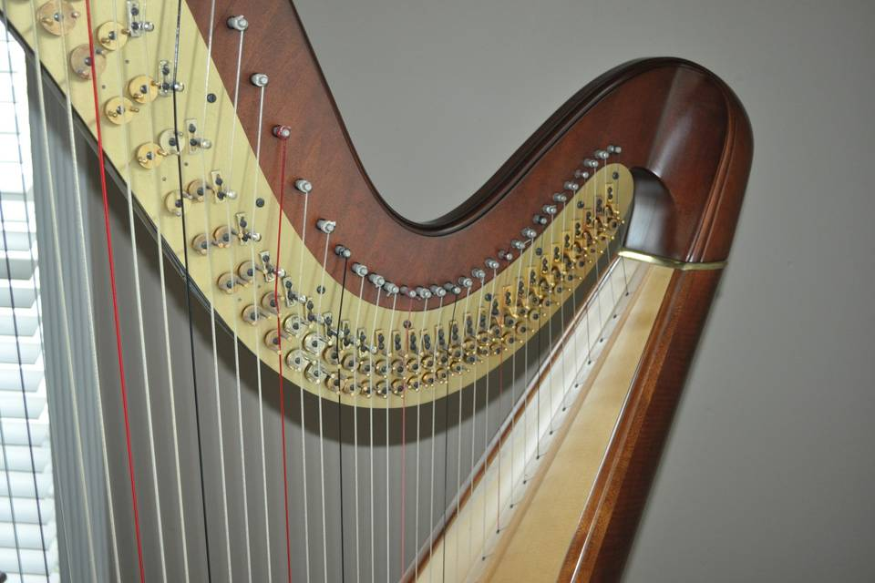 Concert harps have 47 strings & 7 pedals and are able to play any key, style or range of music.  It can serve as a solo instrument or as a part of an ensemble.