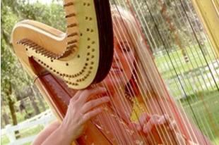 Harp by Victoria