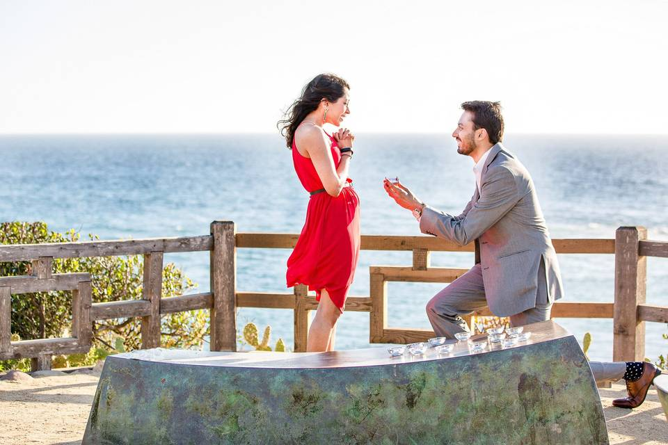 Beautiful proposal overlooking Laguna Beach and Pacific Ocean