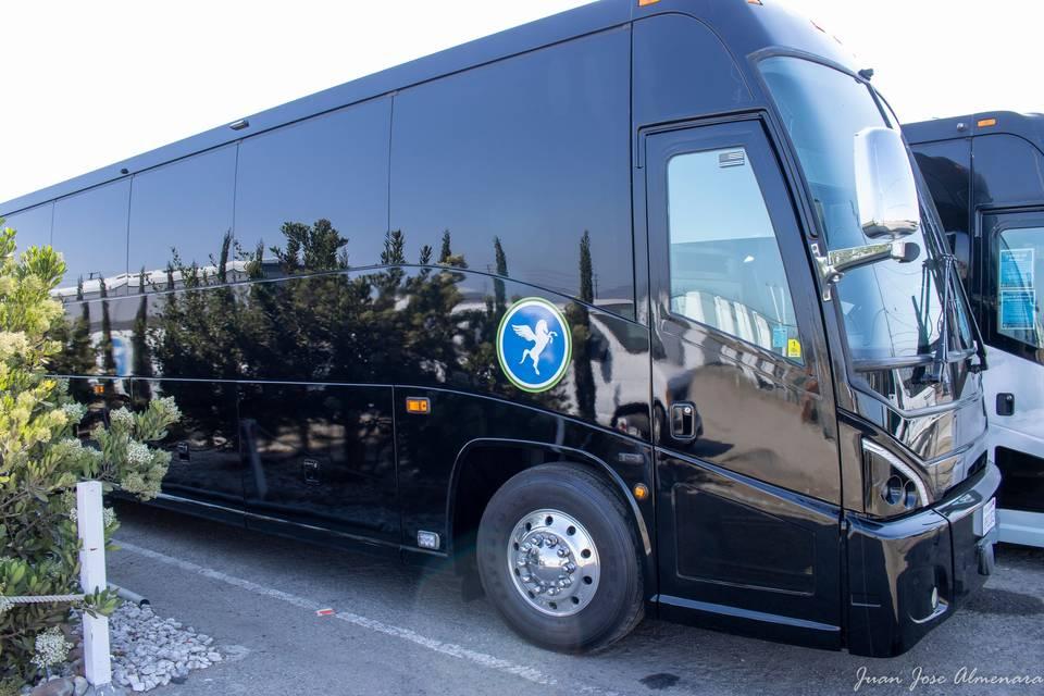 Luxury Coach Bus fits 56 pax