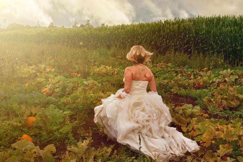 Bride in the Pumpkin Patch