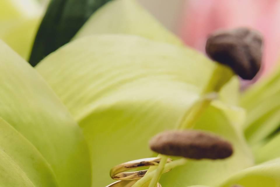 Ring Detail Shots