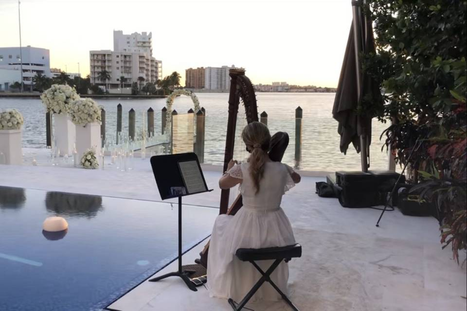 Romantic proposal with harp